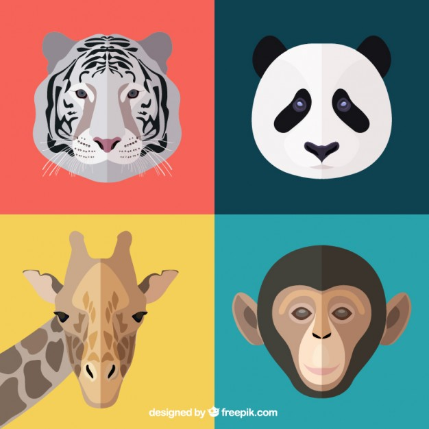 626x626 Animal Faces Vector Free Download