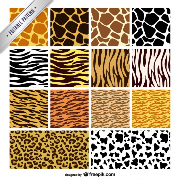 626x625 Animal Print Patterns Collection Vector Free Download