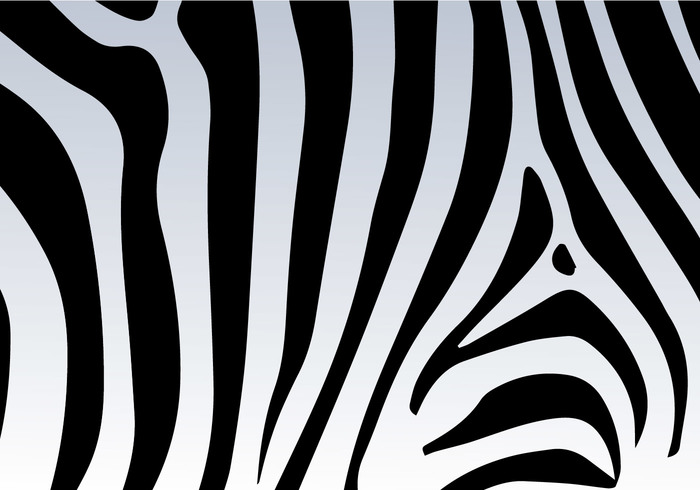 700x490 Zebra Print Vector Background 116688