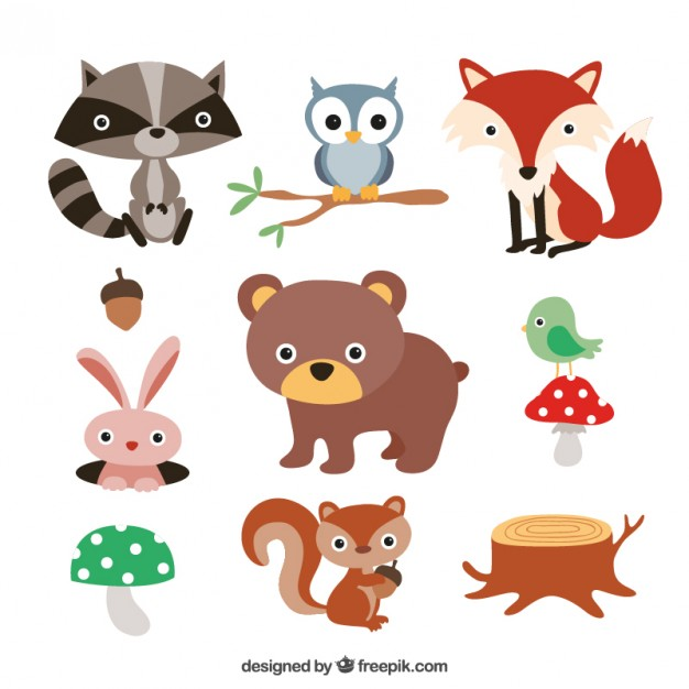 626x626 Cute Forest Animals Vector Free Download