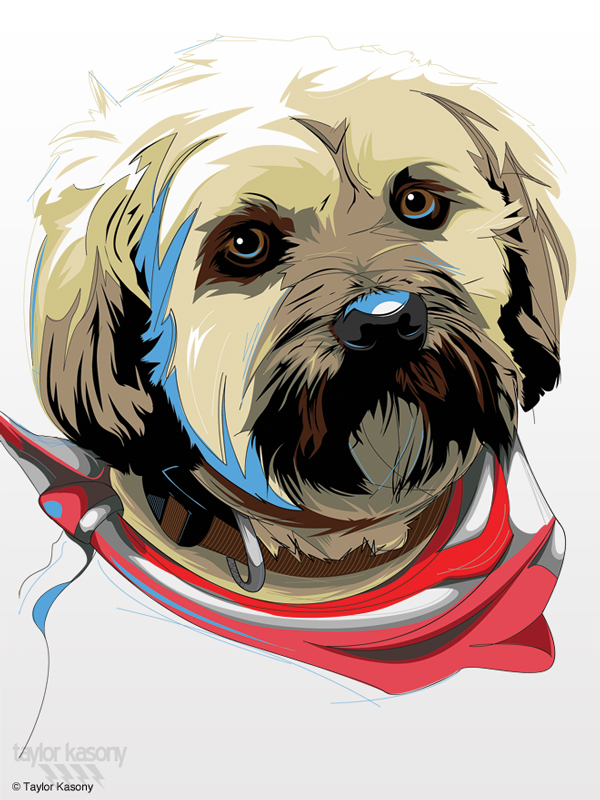 600x800 40 Inspiring Animal Vector Art Illustrations