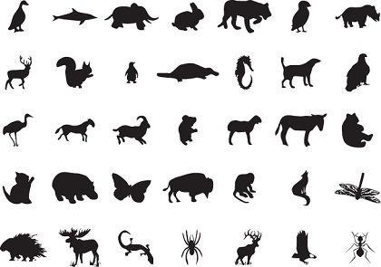 420x295 Wild Animal Clip Art Free Vector Download (217,168 Free Vector