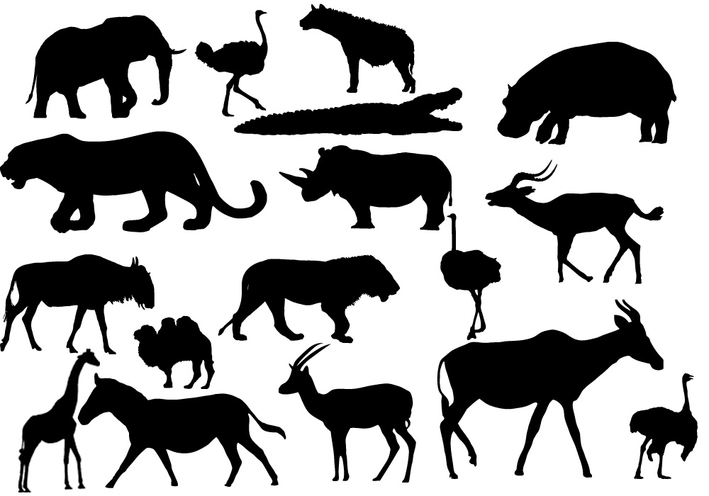 Animal Vector Images