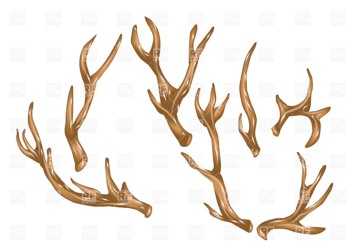 1200x849 Antlers Vector Image Vector Artwork Of Plants And Animals
