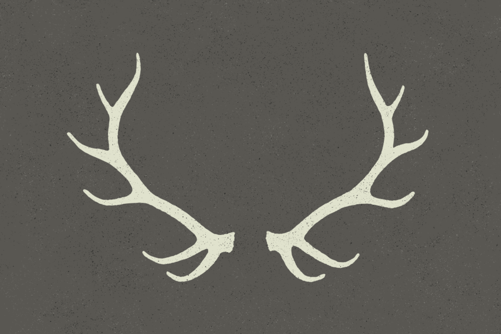 1023x681 Antlers By Hand Ghostlypixels