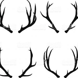 300x300 Vector Deer Antlers Collection Gm Sohadacouri