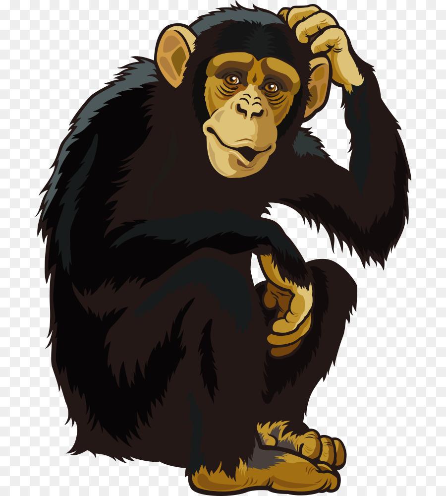 900x1000 Orangutan Ape Chimpanzee Monkey