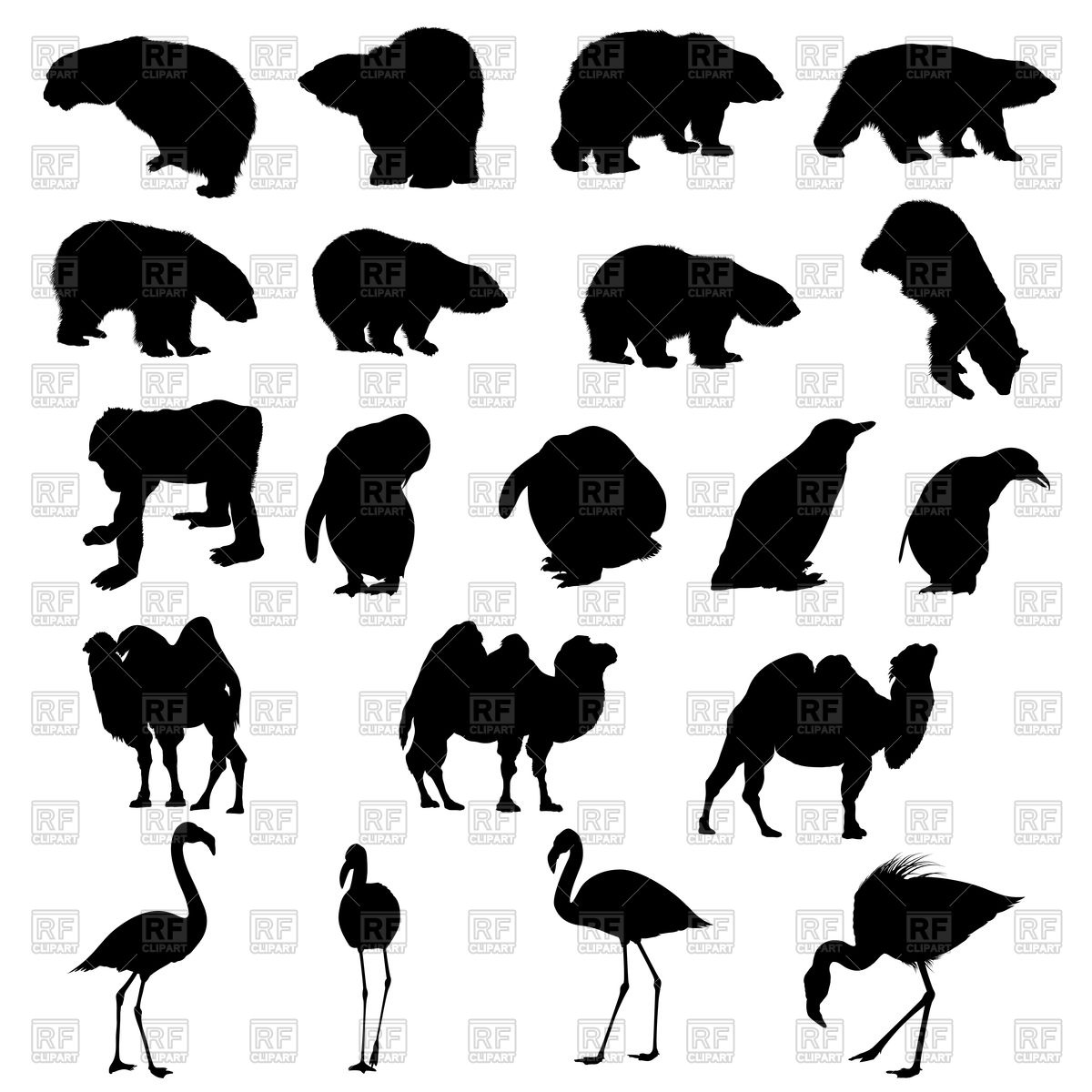 1200x1200 Set Of Bears, Ape, Penguins, Camels And Flamingos Silhouettes