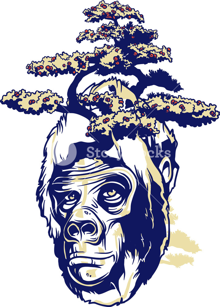 716x1000 Vintage Vector T Shirt Design With Ape Royalty Free Stock Image