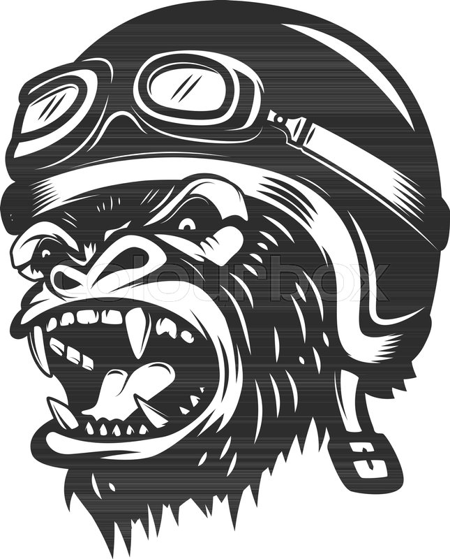 645x800 Angry Gorilla Ape In Racer Helmet. Design Element For Logo, Label