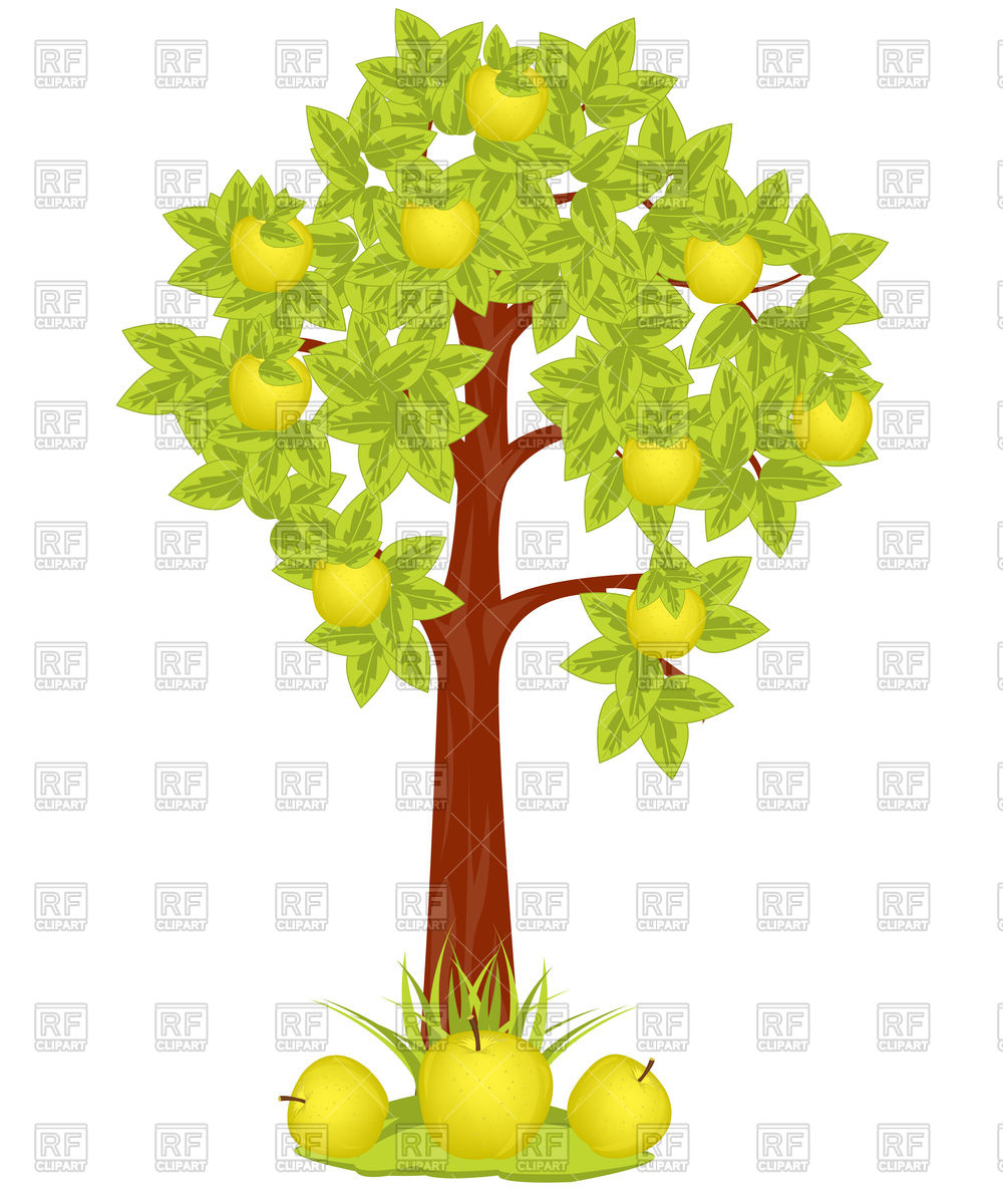1000x1200 Apple Tree With Apples Vector Image Vector Artwork Of Plants And