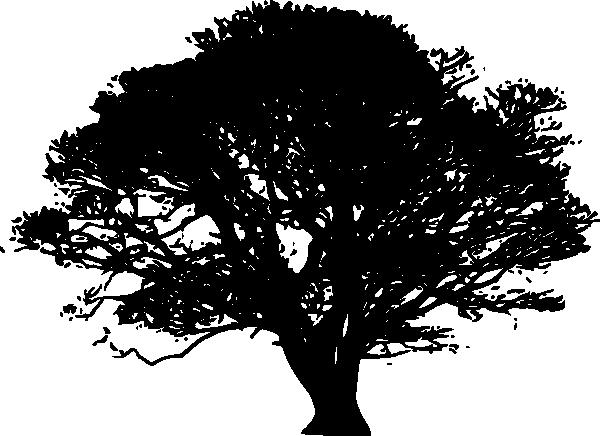 600x436 Arbol Clip Art