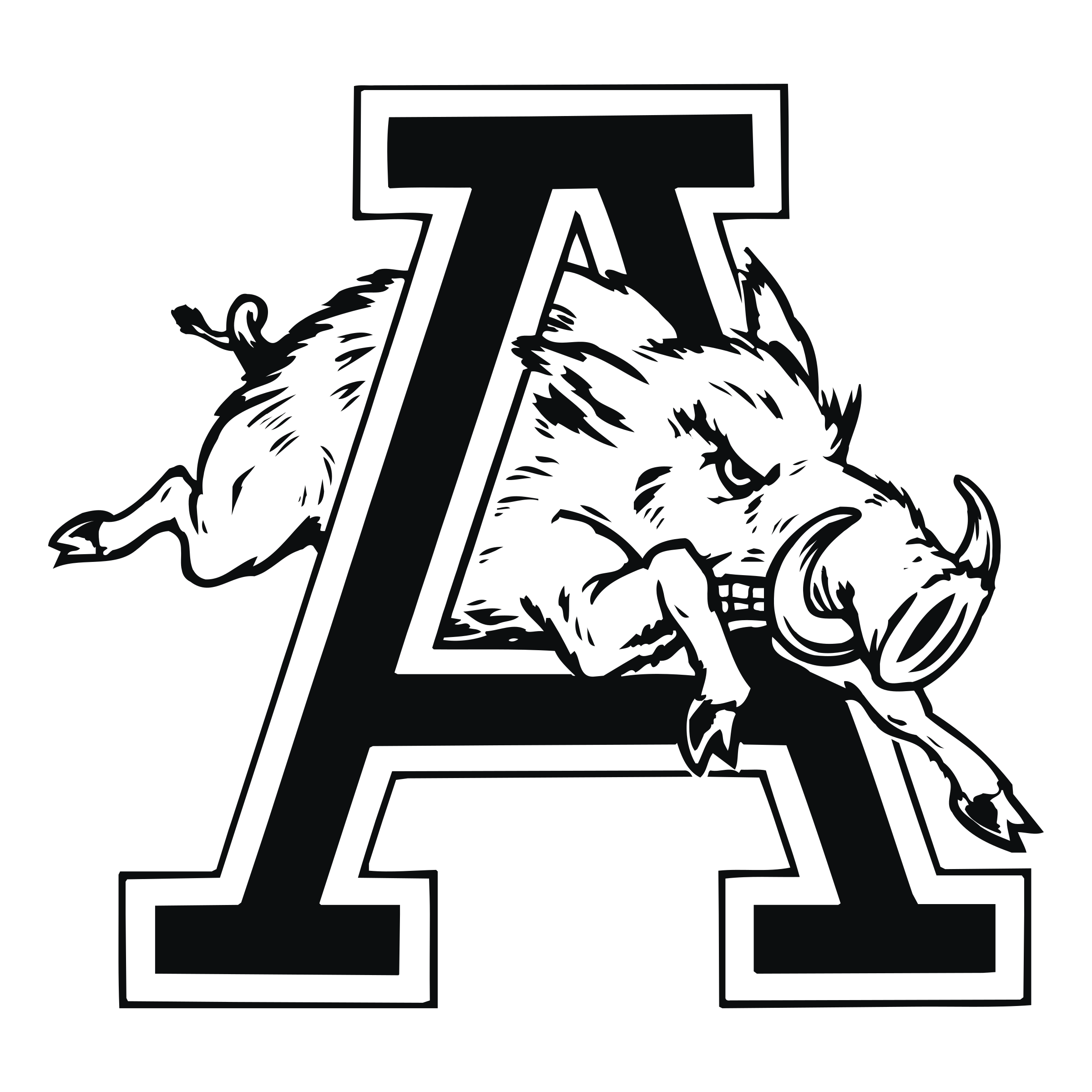 Arkansas Outline Vector