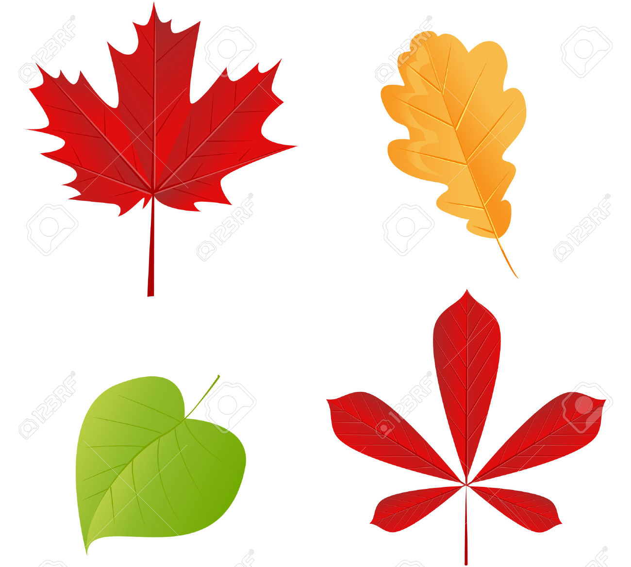 1300x1169 Aspen Leaves Clipart Collection
