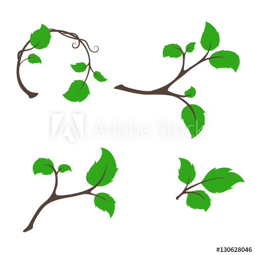 500x500 Branch Tree With Aspen Leaves Vector Set For Harvest, Natural