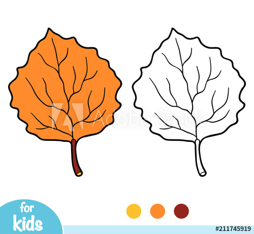500x460 Coloring Book, Aspen Leaf