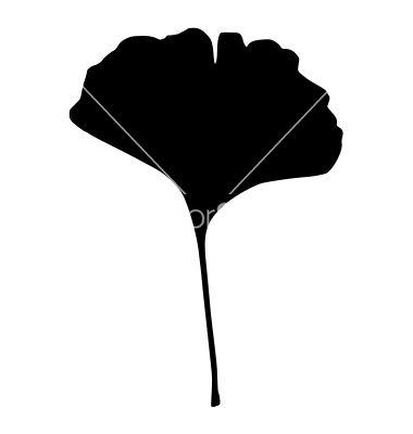 380x400 Aspen Leaf Vector Logo Ginkgo Leaf Vector Art Projects