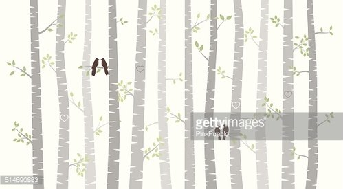 499x275 Vector Birch Or Aspen Trees With Autumn Leaves Premium Clipart