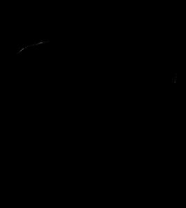 269x300 Atom Black Logo Vector (.eps) Free Download