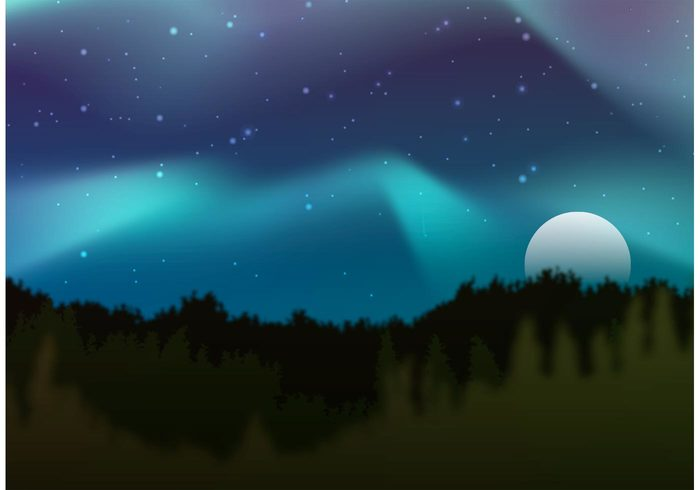 700x490 Northern Lights Vector Forest