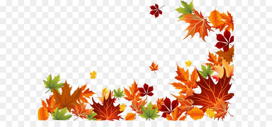 900x420 Autumn Leaf Color Autumn Leaf Color Euclidean Vector