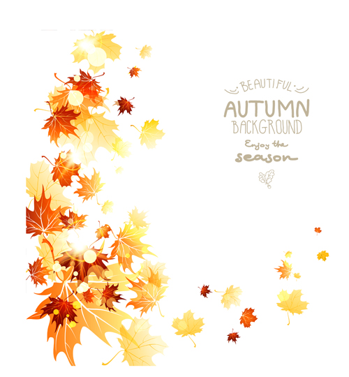 500x540 Beautiful Autumn Leaves Background Creative Vector 04 Free Download