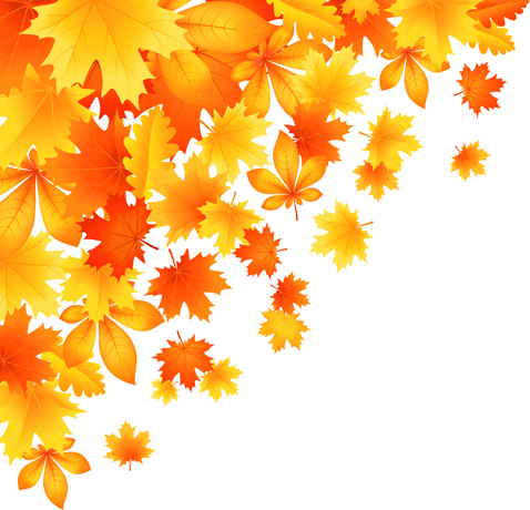 478x460 Beautiful Autumn Leaves Vector Free Vector In Encapsulated