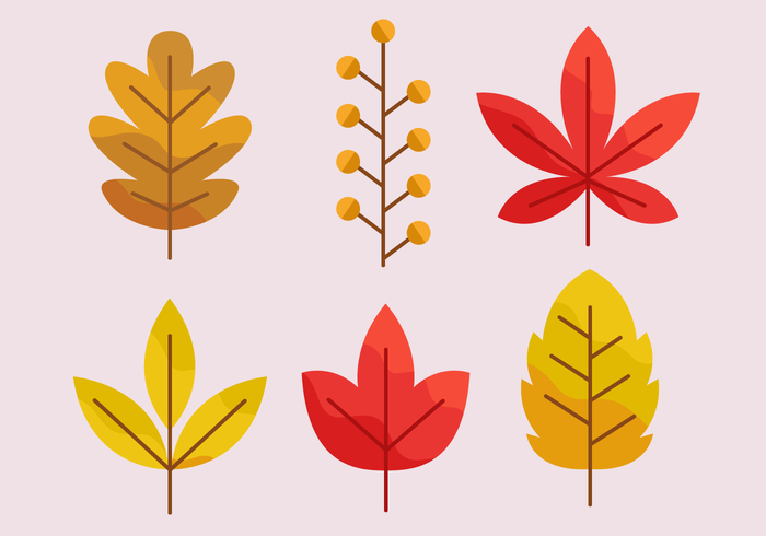 700x490 Free Autumn Leaves Vector