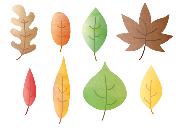 700x490 Free Watercolor Autumn Leaves Vector