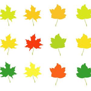 300x300 Autumn Leaves Vector