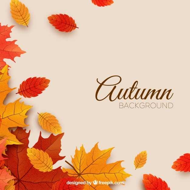 626x626 Autumn Vectors, Photos And Psd Files Free Download
