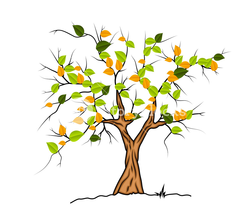 1000x891 Autumn Tree Vector Royalty Free Stock Image