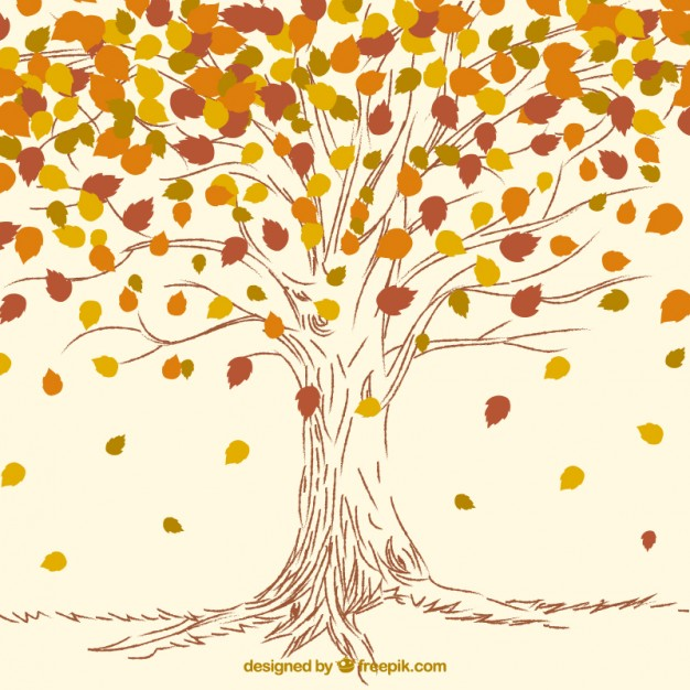 626x626 Hand Drawn Autumn Tree Background Vector Free Download