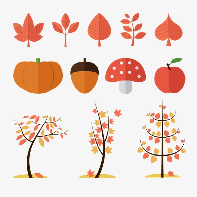 650x650 Autumn Vector Elements, Autumn Plant, Flat, Trees Png And Vector