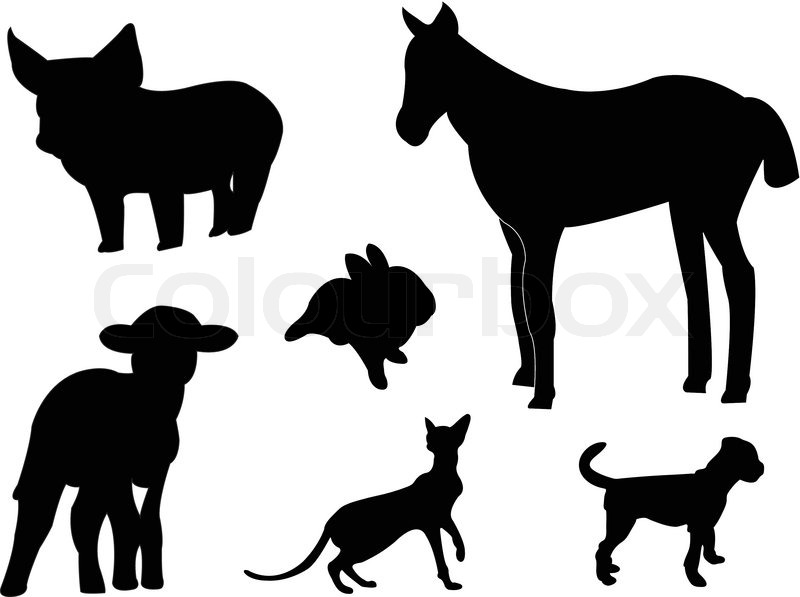 800x597 Baby Animals Silhouettes