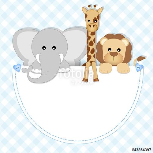 500x500 Baby Animals