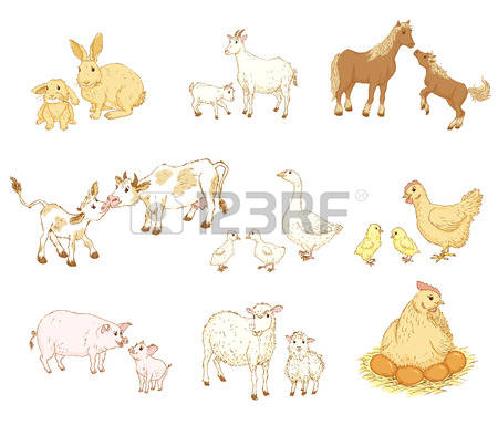 450x384 Mama Baby Animal Banner Library Download