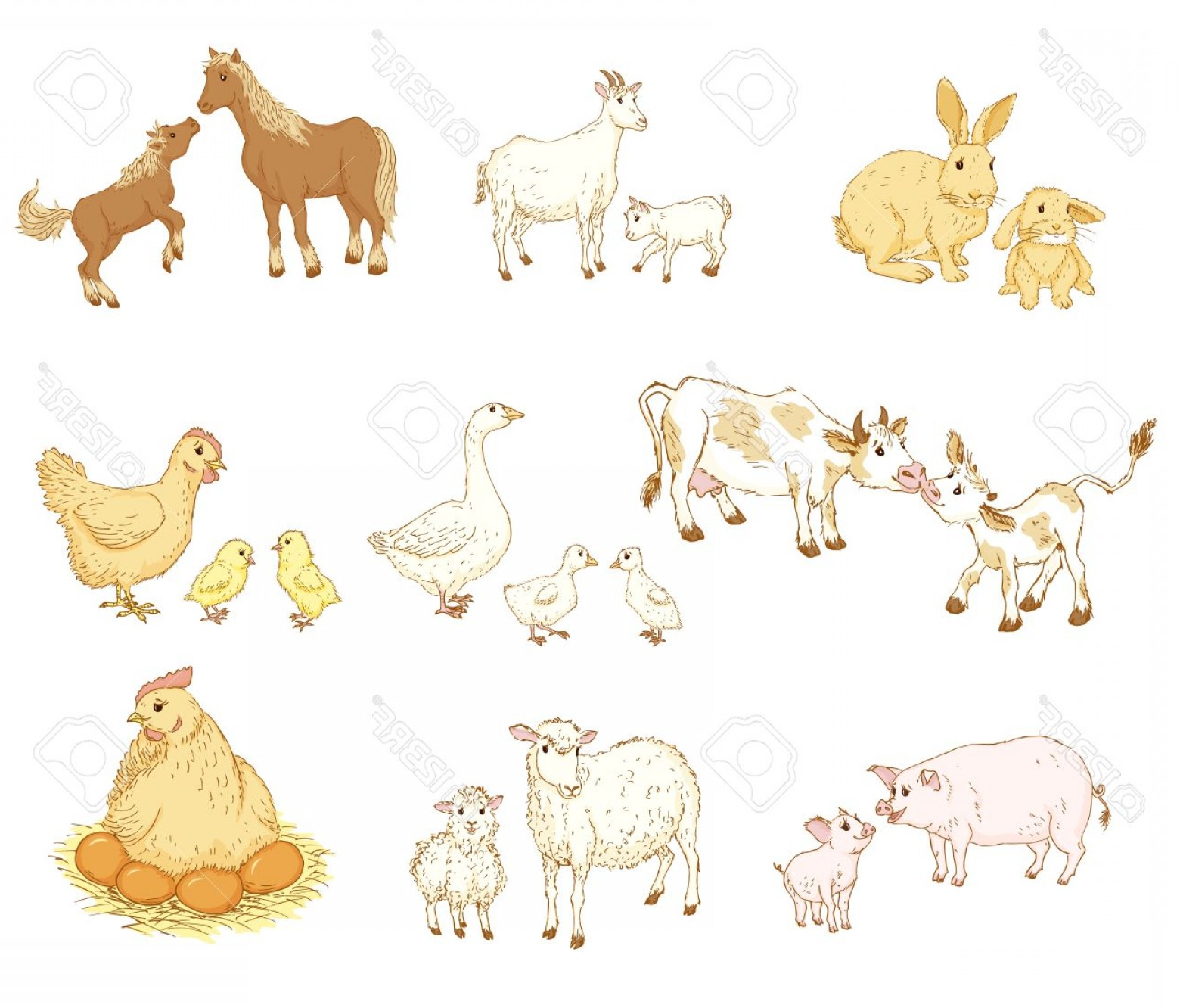 1560x1332 Photostock Vector Farm Baby Animals With Mother Baby And Mother