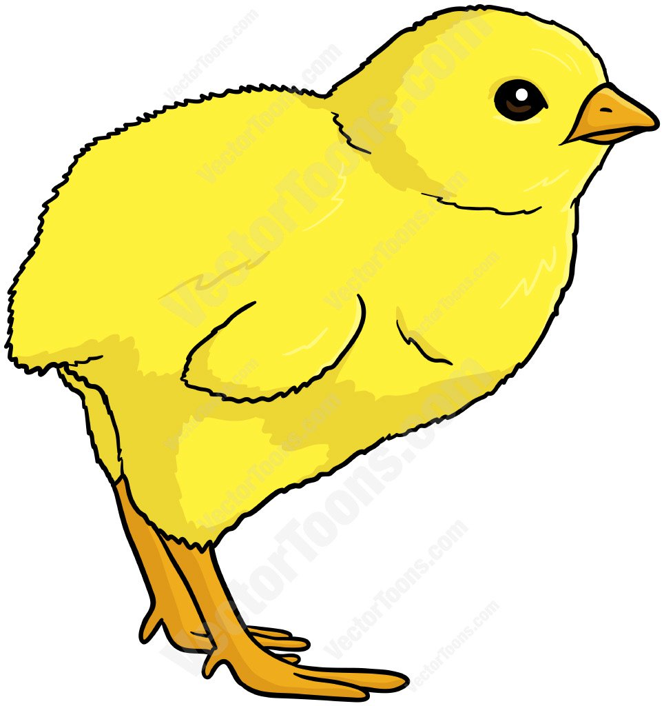 964x1024 Baby Chick Facing Left Clipart By Vector Toons