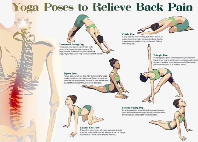 650x467 Decorative Yoga Relieve Back Pain, Yoga Vector, Yoga, Promotional