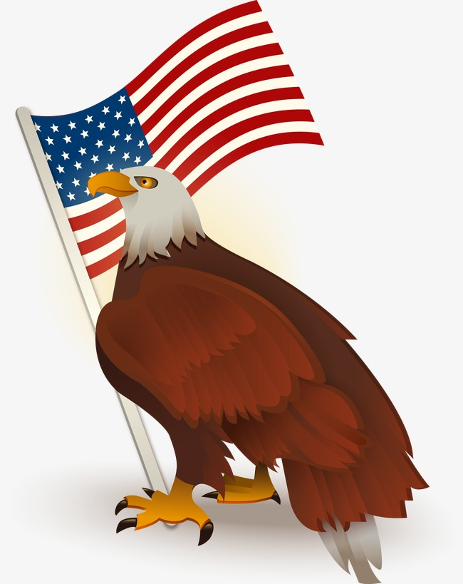650x819 American Flag Bald Eagle, Flag Vector, Eagle Vector, United States