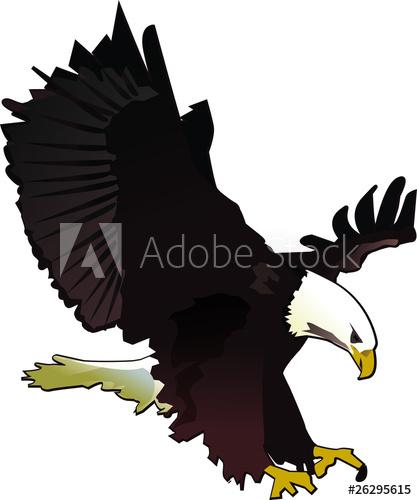 417x500 Bald Eagle Vector Illustration
