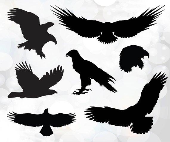 570x476 Eagle Svg Bald Eagle Svg Fly High Graphic Eagle Vector Etsy