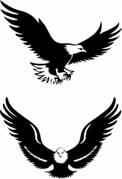 250x368 Eagle Free Vector Download (371 Free Vector) For Commercial Use