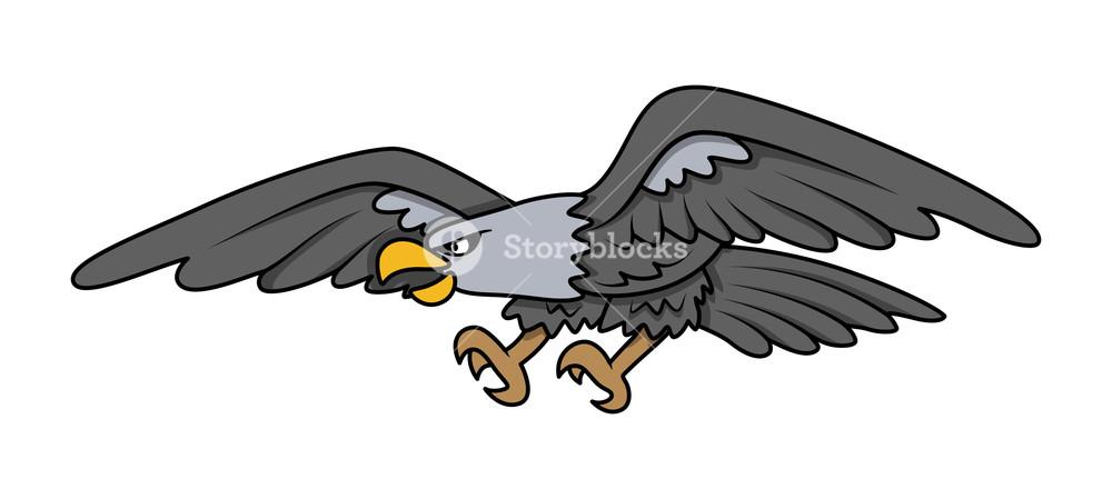 1000x449 Bald Eagle