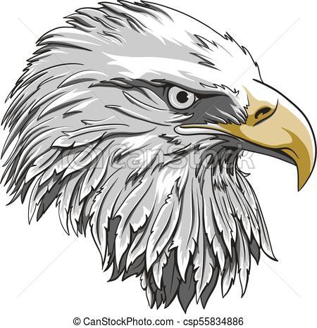 450x466 Web. Eagle Head Logo Template, Hawk Mascot Graphic, Portrait Of A