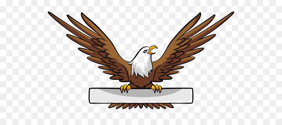 900x400 Bald Eagle Banner Illustration
