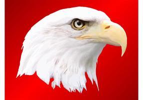 286x200 Bald Eagle Vector