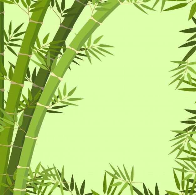 626x625 A Green Bamboo Border Vector Premium Download
