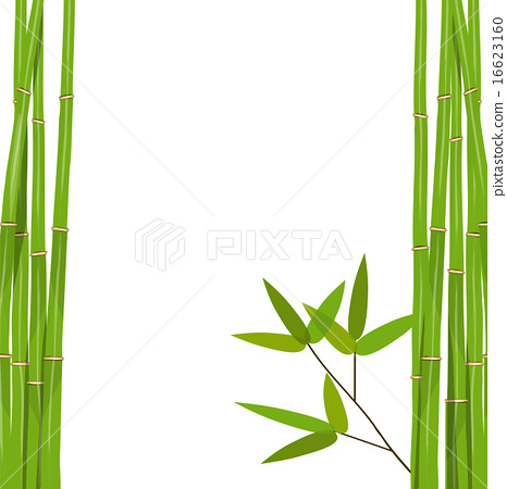 466x450 Colorful Stems And Bamboo Leaves. Vector Illustration.